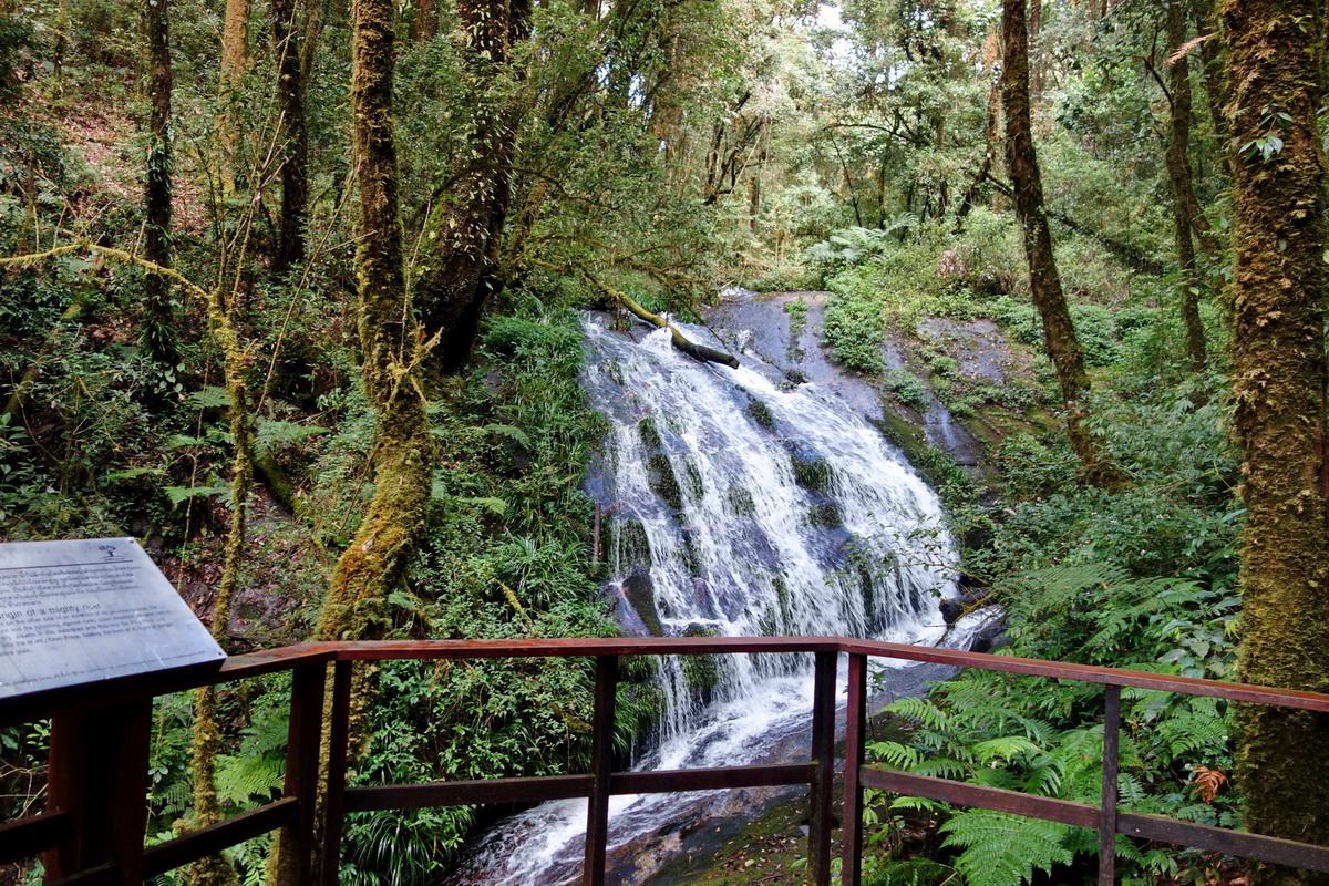kiew mae pan, kiew mae pan nature trail, kew mae pan, kew mae pan nature trail